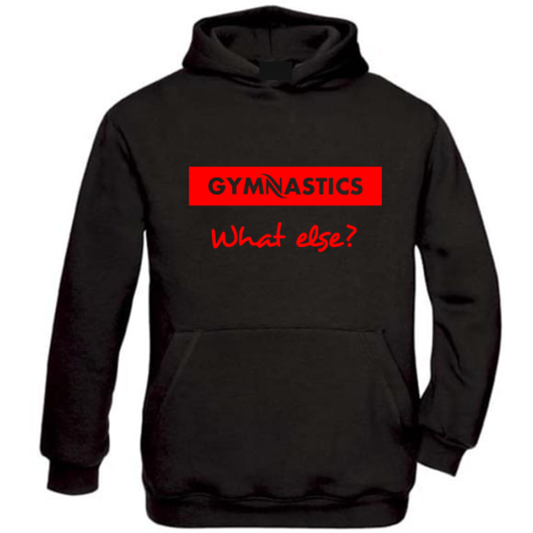 Gymnastics What Else Sweat Homme